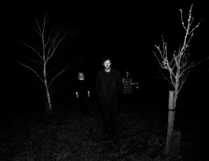 thickets-dark-1-web